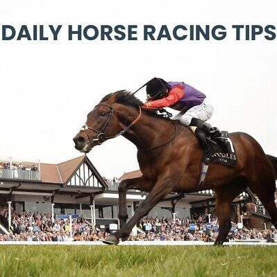 Daily Horse Racing Tips & Strategy +128 Points In May +2626 Points From 1/1/17
