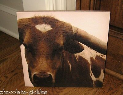 Brown COW Longhorn Canvas Wall PICTURE*Primitive/French Country Farmhouse Decor