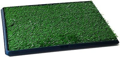 Pet Potty Trainer Grass Mat Dog Puppy Training Pee Patch Pad with Tray 25x20