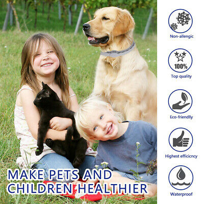 Seresto Waterproof 57CM Long Dogs Cats Up To 8 Month Flea and Tick Collar White