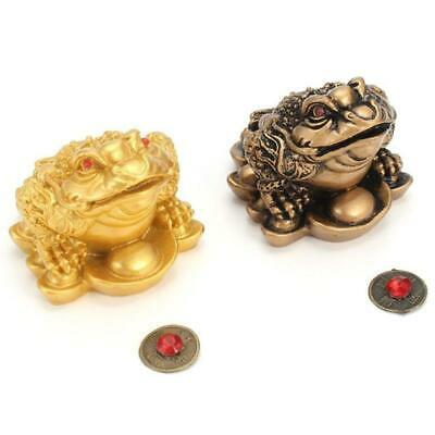 Chinese Feng Shui Money Lucky Fortune Wealth  Toad Coin Home Decoration P4M8