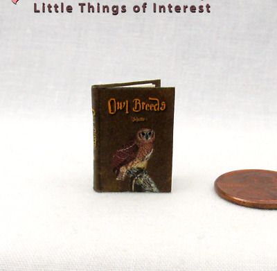 OWL BREEDS Miniature Book Dollhouse 1:12 Scale Illustrated Potter Magic Wizard