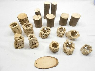 Cholla Wood Craft Pieces Lot Of 19