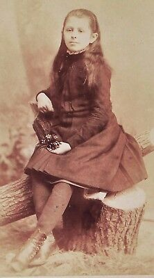 Antique Late 1800'S Cabinet Photo - Rochester New York Girl Posing