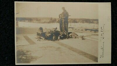 Vintage deer hunting camp real photo picture postcard several hunters railroad