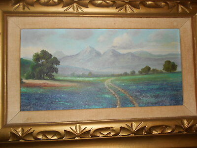 Beautiful Original Signed  Oil Painting 'texas Bluebonnets' On Board Framed