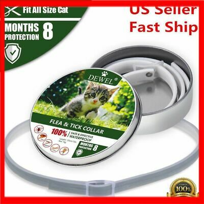 Dewel Flea and Tick Collar For Small Cat Dog Puppy 8 Month Protection US STOCK