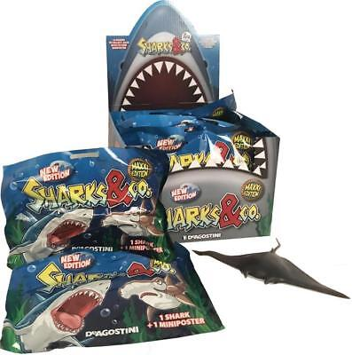 SHARKS & CO MAXXI EDITION NEW Sealed 3 Packets
