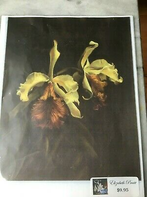 Oil Painting Instruction Packet Gorgeous Cattleya Orchids-By Elizabeth Pruitt-