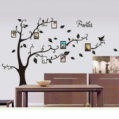 New 50*70CM Photo Tree PVC Wall Decals Wall Stickers Mural Art Home Decor JS