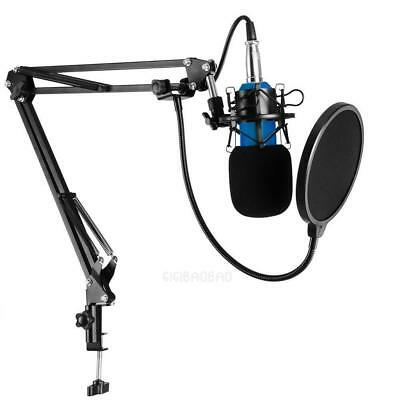 Condenser Pro Audio BM800 Microphone Sound Studio Mic + Shock Mount+Stand+Filter