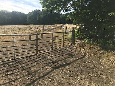 Land for sale - 1 Acre Grazing Paddock -  Northchapel near Petworth