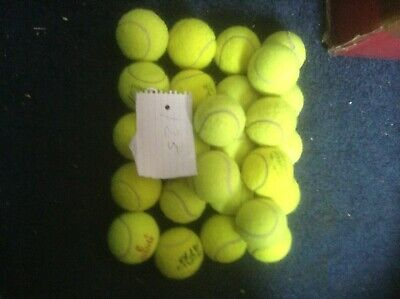 25 tennis balls for dogs. Ideal