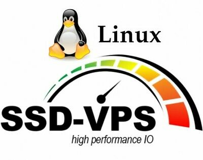 Virtual Private Server - Linux VPS - SSD 55GB