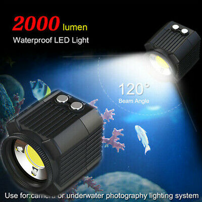 Mini LED Video Light Diving Photography Lamp Waterproof IPX8 for DSLR Camera