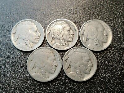 Nice Lot of Five (5) Early-date Buffalo Nickels (15-P, 16-P, 17-P, 18-P, 19-P)