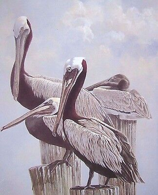 Pelicans Sitting on Posts With Official Seal On Print