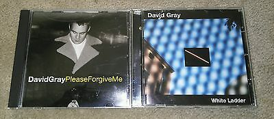 DAVID GRAY PLEASE FORGIVE ME 2 TRACK RARE OOP PROMO REMIX CD & White Ladder CD