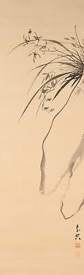 HANGING SCROLL JAPANESE PAINTING JAPAN ORCHID INK OLD ART ANTIQUE PICTURE d213