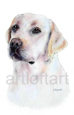 """WHIPPET DOG ART  ACEO Card Print by A Borcuk   2.5/""""x3.5/"""""""