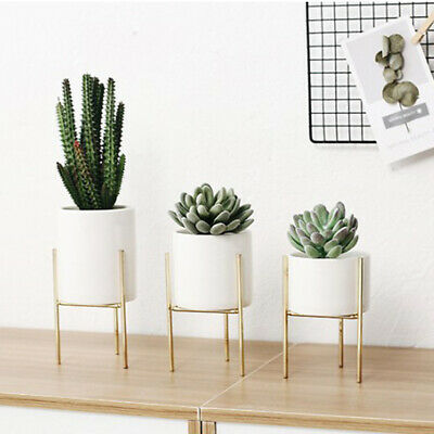 2Pcs Iron Plant Flower Stands Rack Succulent Pot Holder Garden Planter Black