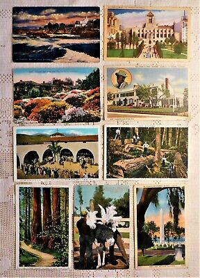 LOT OF 9 VINTAGE POST CARDS - EARLY 20th CENTURY - CALIFORNIA