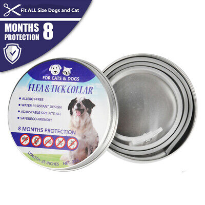 Flea & Tick Collar for Small Dogs under 8kg (18lbs) and Cat 8 month Protection T