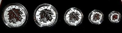 2014 ROYAL CANADIAN MINT SILVER MAPLE LEAF SET 5 COINS w GOLD LEAFS RARE & C.O.A
