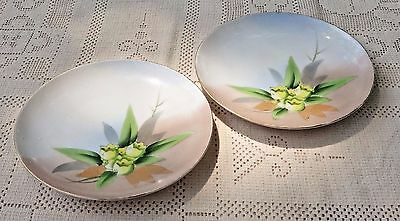 Pair Of Antique 1921-1928 Meito China Hand Painted Floral Plates - Japan