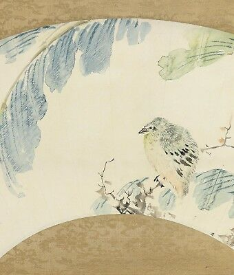 JAPANESE PAINTING Bird HANGING SCROLL OLD JAPAN Picture ANTIQUE VINTAGE d144
