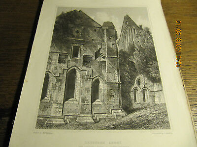 Planche Dryburgh Abbey - The Chapter House & South Transept  BILLINGS 19e