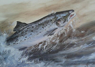 R J Willett.  Limited edition print of a leaping Salmon, unframed