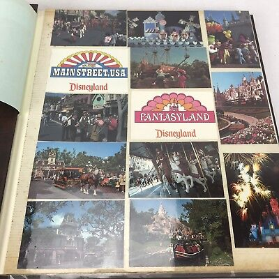 Vintage Postcard Collection USA Disney Full Album Zoo Collectable Post Card