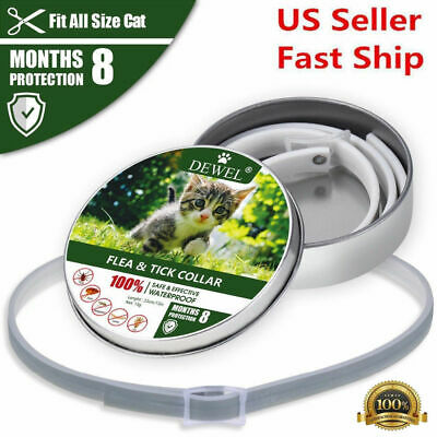 Dewel Bayer Flea and Tick Collar For Small Cat Dog Puppy 8 Month Protection