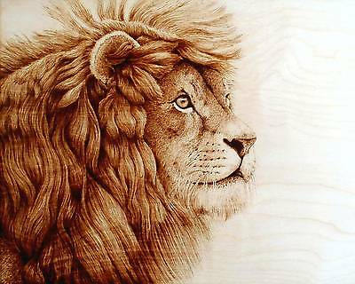 "Original Animal Art ""lion In The Distance"" Drawing - Pyrography/woodburning"