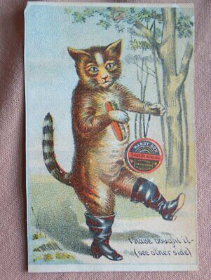 Handy Box Shoe Blacking The Sensible Cat I Have Bought It Victorian Trade Card