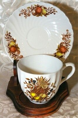 Royal Wessex Cabinet Cup & Saucer Desire White Ironstone by Swinnertons England