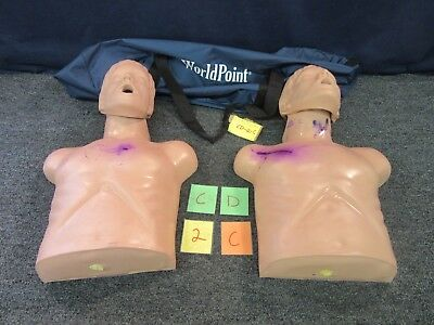 2 World Point CPR Training Manikin First Aid Adult Patient Simulator Torso Use C