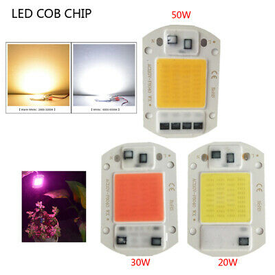 20W 30W 50W COB LED Lamp AC220V Smart IC No Need Driver for Spotlights Wholesale