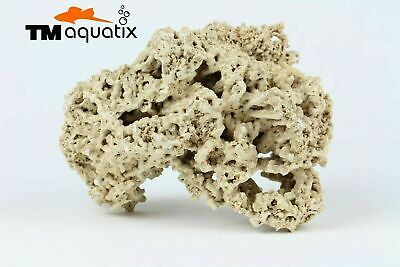 Natural Light Limestone Ocean Rock Malawi Cichlid Aquarium Fish Tank Stones