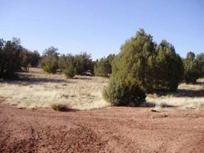 2 ACRES & a 1989 MOBILE HOME in SELIGMAN, YAVAPAI COUNTY, AZ- REDUCED TO SELL!
