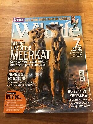 BBC Wildlife magazine, volume 31, number 13