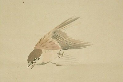 JAPANESE PAINTING HANGING SCROLL Sparrow OLD Japan Antique VINTAGE Art Bird b372