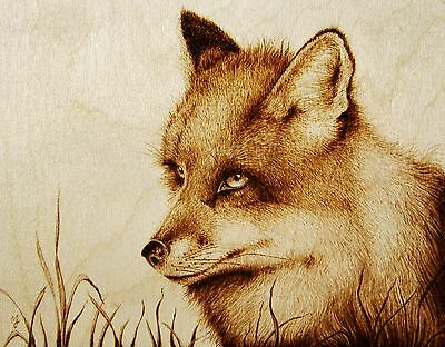 Original Animal Drawing-Pyrography/woodburning-Fox-'the Trickster' In The Grass