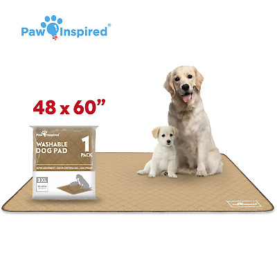 """48"""" x 60"""" 3XL Paw Inspired Washable Pee Pads for Dogs, Puppy Training Pads"""
