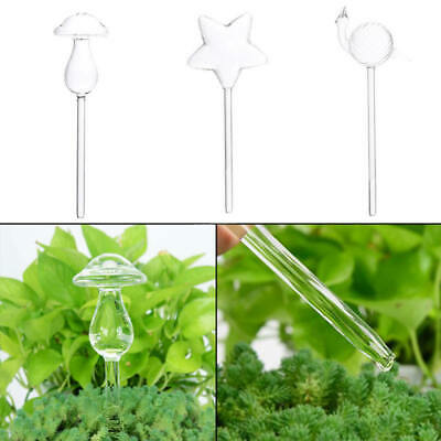 Self Watering Globe Plant Water Bulbs Hand Blown Clear Glass 3 Shapes Clear