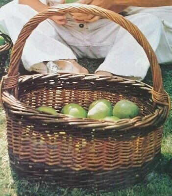 Vintage Pattern How to make an Oval Apple Basket out of Cane Raffia   Reproduced