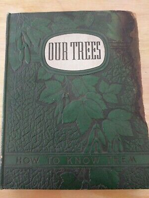 Our Trees How to Know Them: Photographs From Nature by Arthur I. Emerson