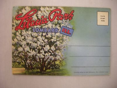 Vintage Fold-Out Postcard Booklet Lilacia Park Lombard Illinois 16 Views 1950