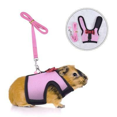 Small Animals Harness Leash Adjustable